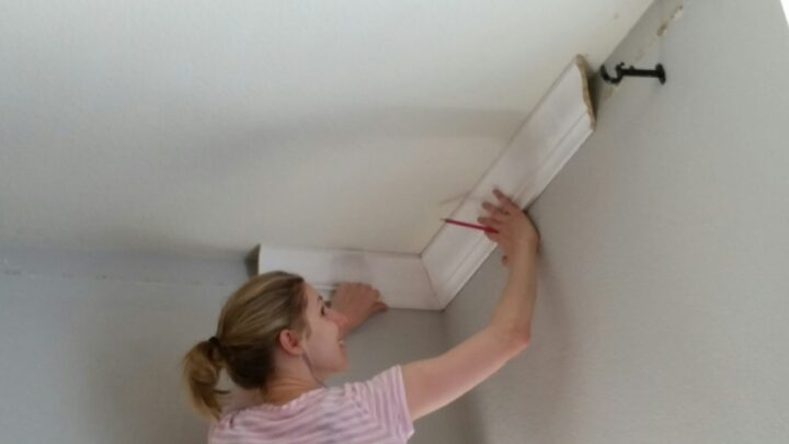 The moment I figured out how to install crown molding. Magical!